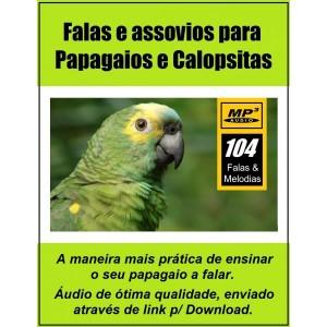 audio-em-mp3-ensine-seu-papagaio-a-falar-novidade