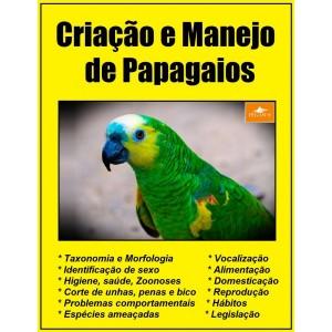 criacao-e-manejo-de-papagaios-novidade
