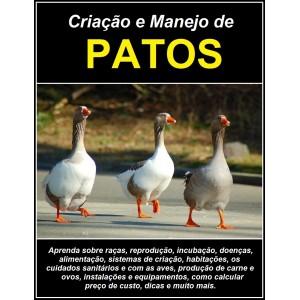 criacao-e-manejo-de-patos (1)