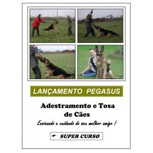 curso-de-adestramento-e-tosa-de-animais