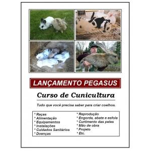 curso-de-cunicultura-criacao-de-coelhos