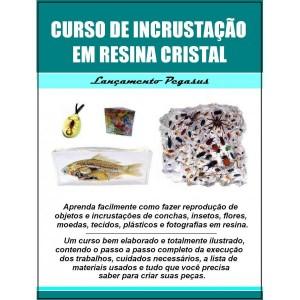 curso-de-incrustacao-de-insetos-e-objetos-em-resina