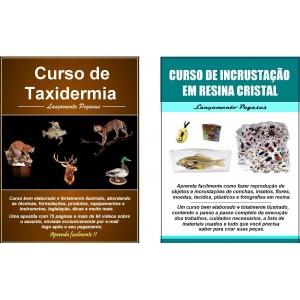 curso-de-taxidermia-curso-de-incrustacao-de-insetos-e-objetos-em-resina